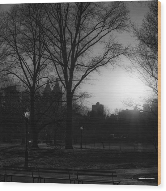 Central Park Sunset In Black And White 3 Wood Print