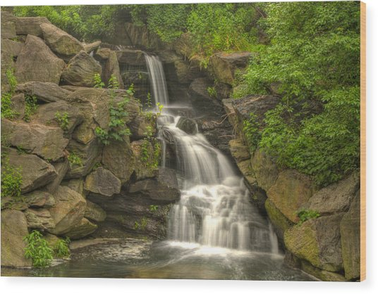 Central Park Waterfall Wood Print by Zev Steinhardt