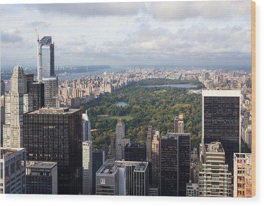 Central Park Wood Print by Wolfgang Woerndl