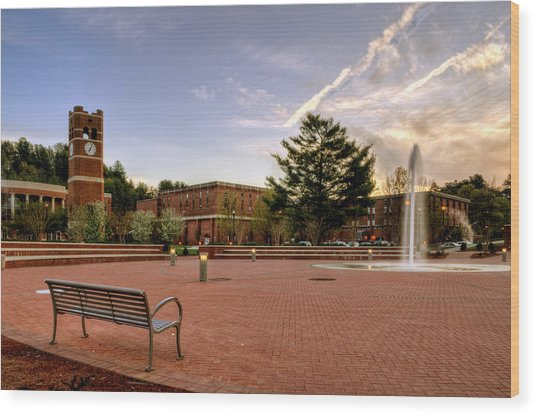 Central Plaza Bench At Wcu Wood Print