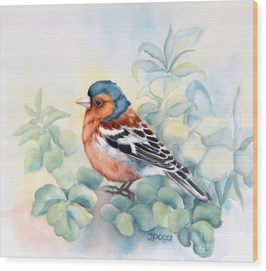 Chaffinch In Grass Wood Print