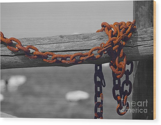 Chained Wood Print