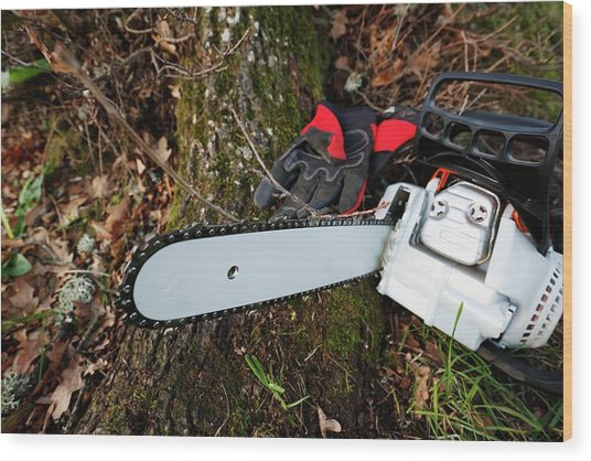 Chainsaw And Gloves Wood Print