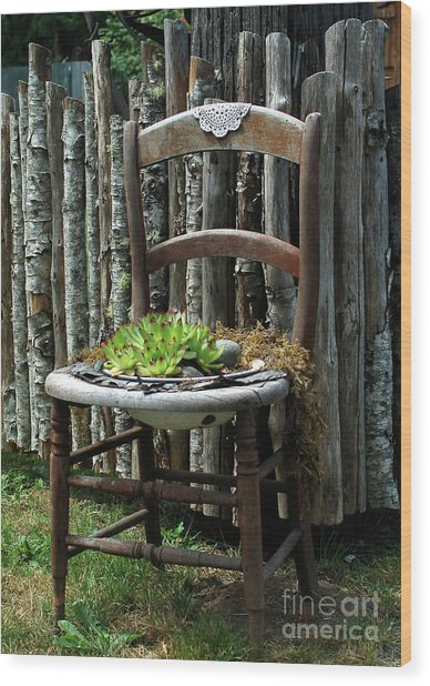 Chair Planter Wood Print