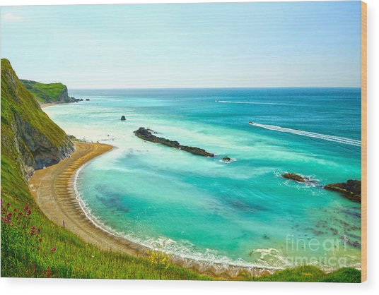 Chalky Shores Wood Print