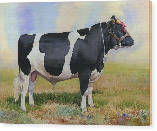 Champion Friesian Bull Wood Print by Anthony Forster