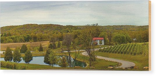 Wood Print featuring the photograph Chandler Hill Patio View by David Coblitz