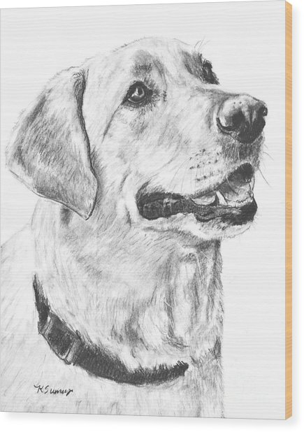 Charcoal Drawing Yellow Lab In Profile Wood Print