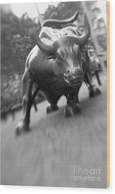 Charging Bull 2 Wood Print by Tony Cordoza