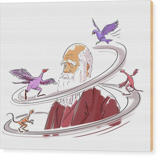 Charles Darwin Wood Print by Harald Ritsch