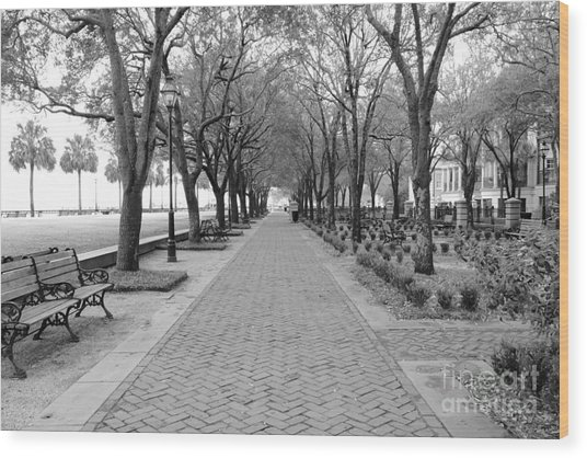 Charleston Waterfront Park Walkway - Black And White Wood Print
