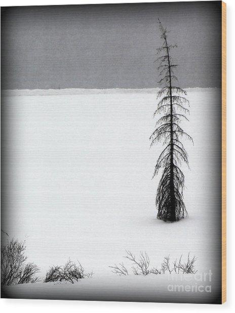 Charlie Brown's Christmas Tree Wood Print