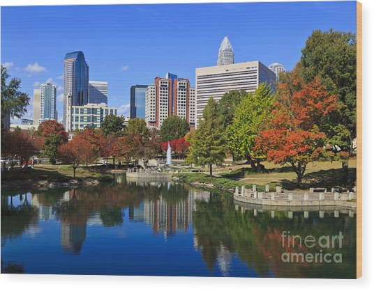 Charlotte North Carolina Marshall Park Wood Print