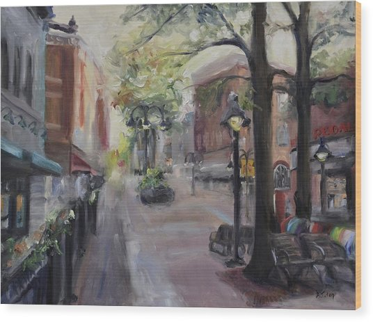 Charlottesville's Historic Downtown Mall Wood Print