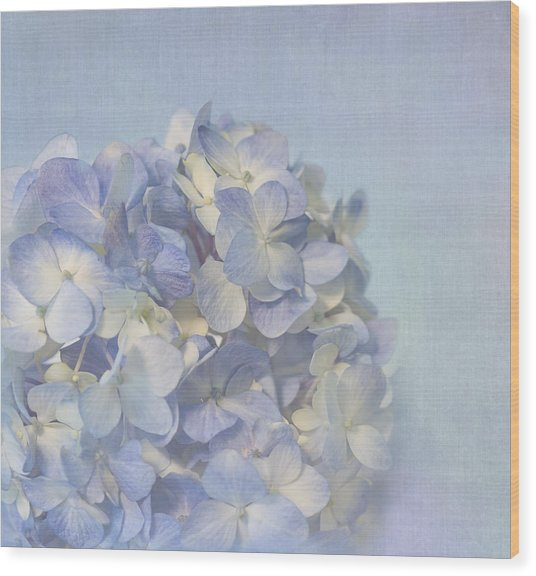 Wood Print featuring the photograph Charming Blue by Kim Hojnacki