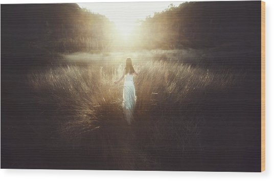 Chase The Sun Wood Print by Terry F
