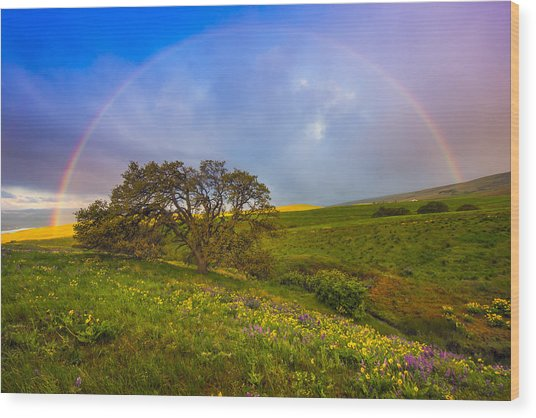 Chasing Rainbows Wood Print