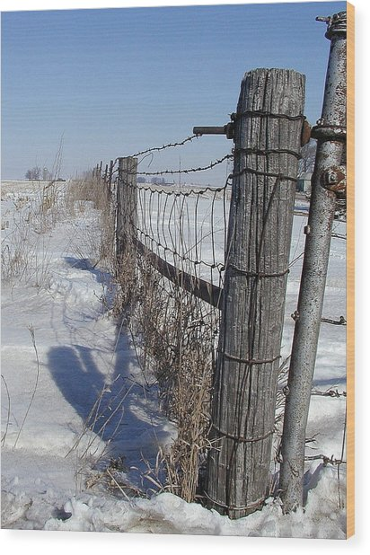 Checking The Fenceline Wood Print