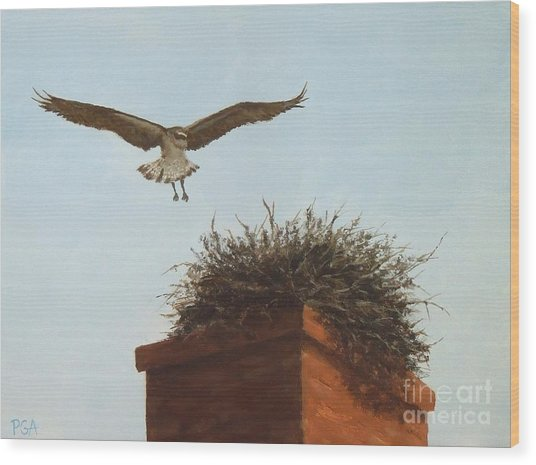 Checking The Nest Wood Print