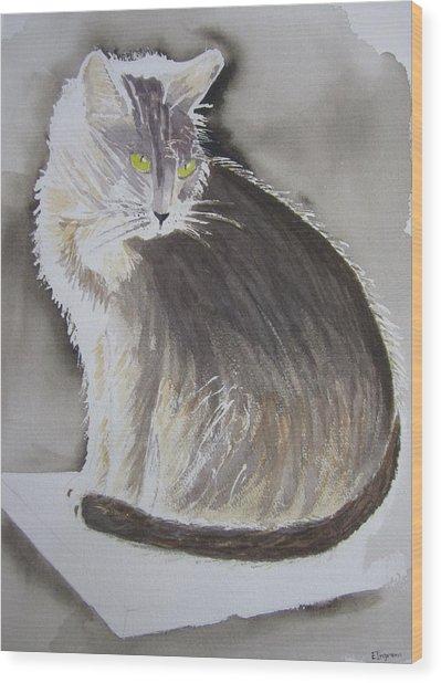 Cheeky Cat  Wood Print