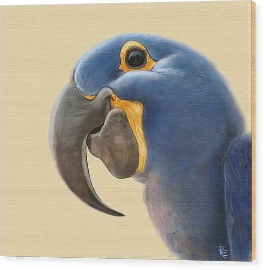 Cheeky Parrot Wood Print