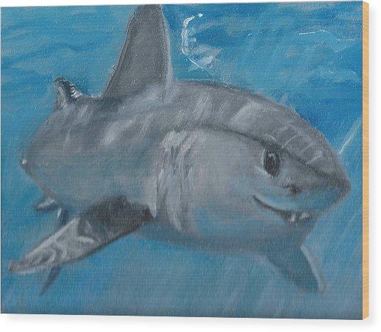 Cheeky Shark Wood Print