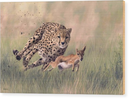 Cheetah And Gazelle Painting Wood Print