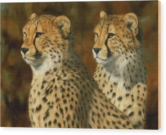 Cheetah Brothers Wood Print