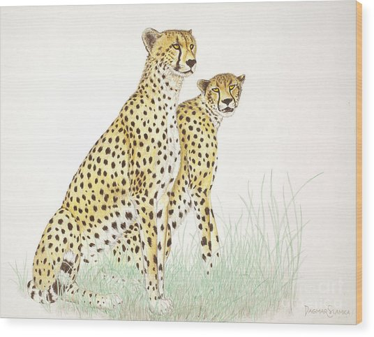 Cheetah Couple Wood Print by Dag Sla