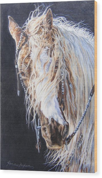 Cherokee Rose Gypsy Horse Wood Print