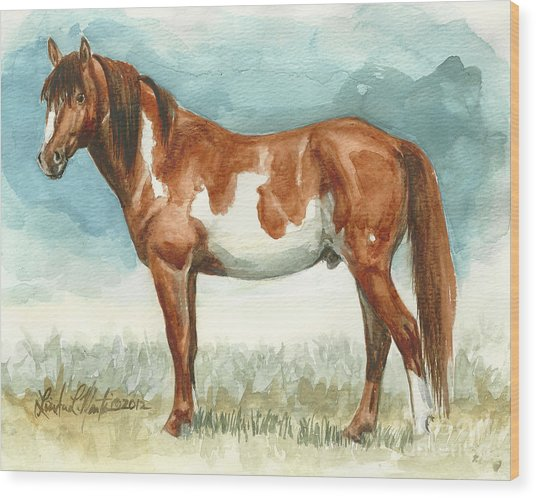 Cherokee Wild Stallion Of Sand Wash Basin Wood Print