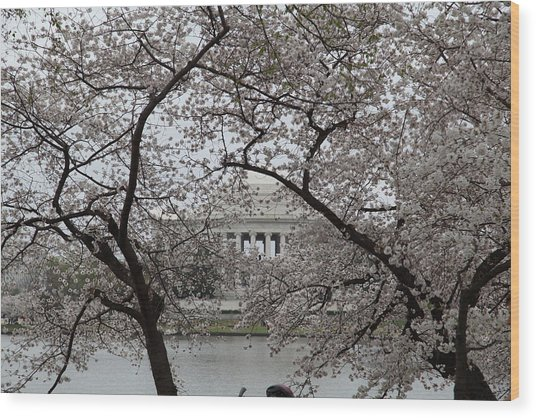 Cherry Blossoms With Jefferson Memorial - Washington Dc - 011352 Wood Print by DC Photographer