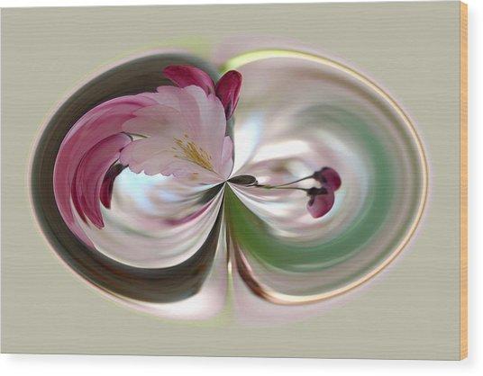 Cherry Tree Blossom Series 802 Wood Print