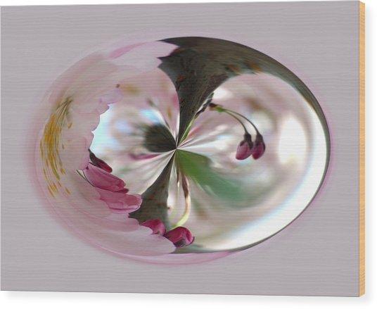 Cherry Tree Blossom Series 804 Wood Print