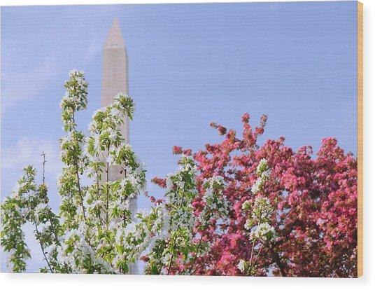 Cherry Trees And Washington Monument Four Wood Print
