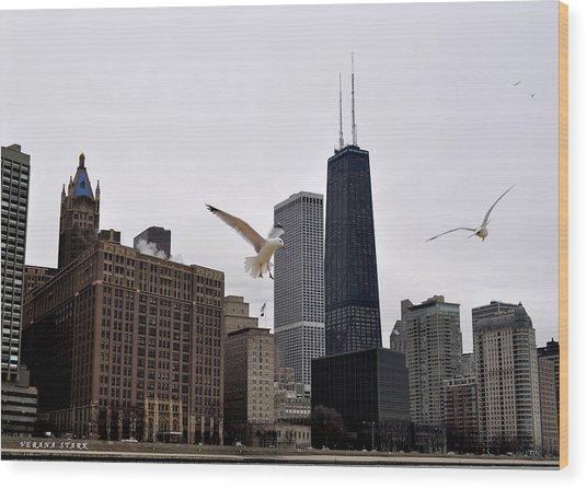 Chicago Birds 2 Wood Print