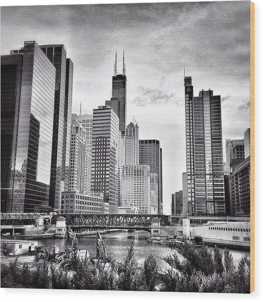 Chicago River Buildings Black And White Photo Wood Print