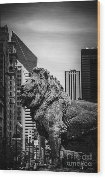 Chicago Lion Statues In Black And White Wood Print