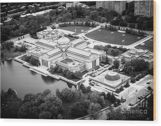 Chicago Museum Of Science And Industry Aerial View Wood Print