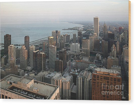 Chicago Shore Wood Print by Bill Quick
