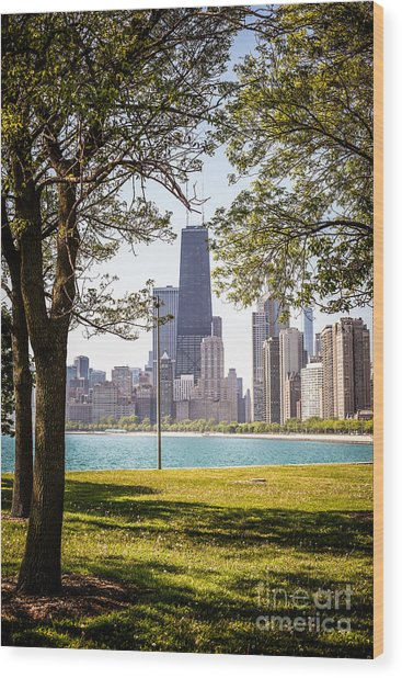 Chicago Skyline And Hancock Building Through Trees Wood Print