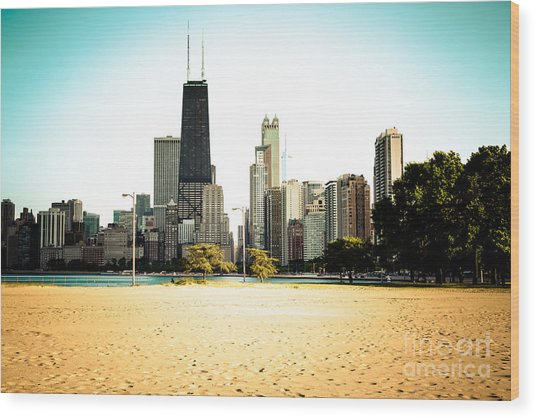 Chicago Skyline At North Avenue Beach Photo Wood Print
