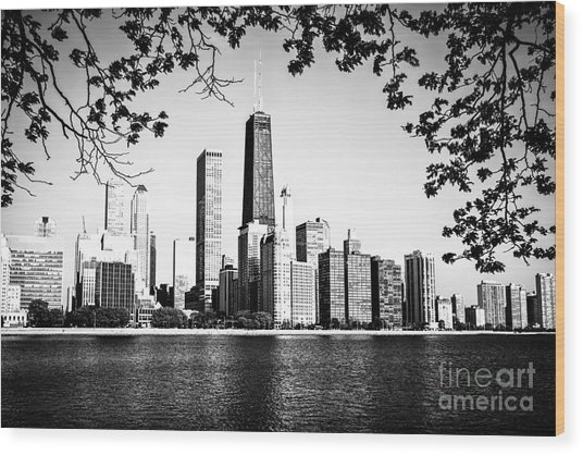 Chicago Skyline Black And White Picture Wood Print