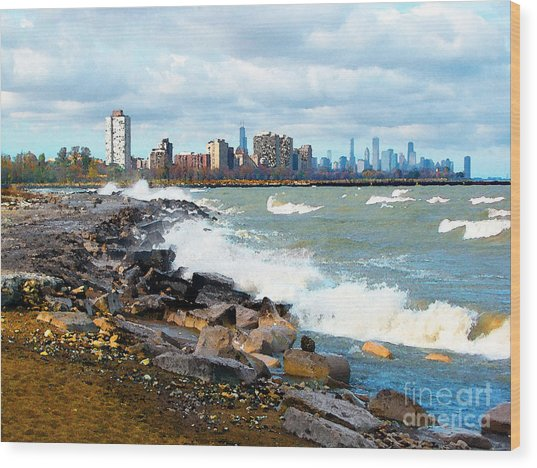 Chicago South Lakefront Wood Print