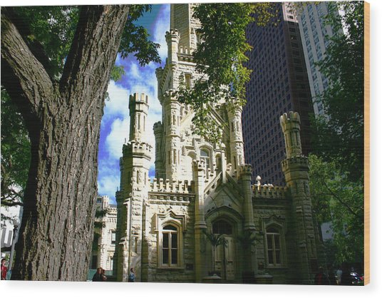 Chicago Water Tower Castle Wood Print