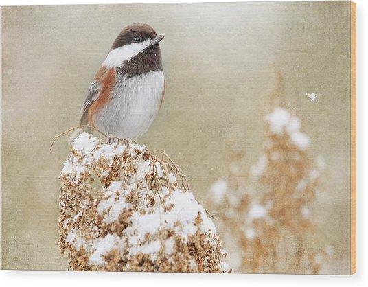 Chickadee And Falling Snow Wood Print