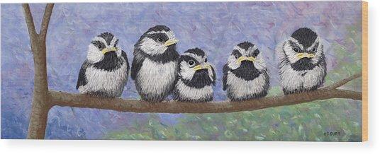 Chickadee Chicks Wood Print