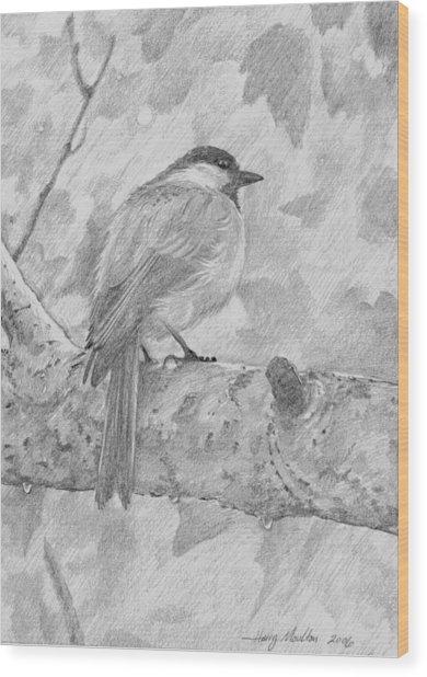 Chickadee In The Rain Wood Print