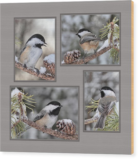 Chickadees In Winter Wood Print