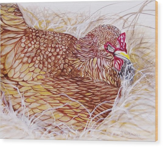 Chicken Laying Egg Wood Print